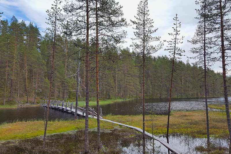 KYLMÄLUOMA HIKING AND FOREST AREA