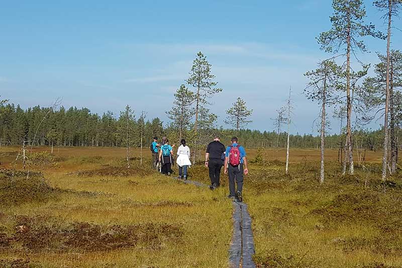 Route Simosenpolku ca. 8 km