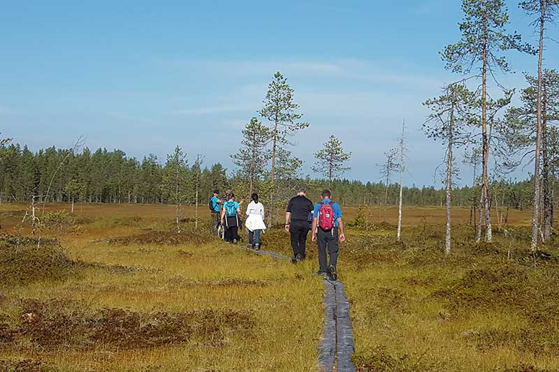 Simosenpolku trail